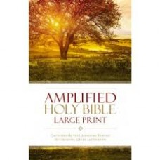 Amplified Bible Large Print - Hard Cover