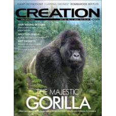 Creation Magazine Vol 42 #2  2020