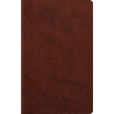 ESV Large Print Personal Size Bible - Trutone Chestnut