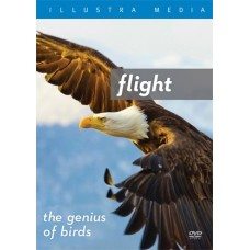 Flight - the Genius of Birds - DVD