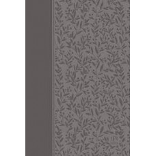 The Passion Translation New Testament with Psalms Proverbs and Song of Songs - Grey Faux Leather - Brian Simmons - 2nd Edition