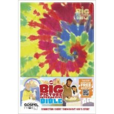 HCSB Big Picture Interactive Bible - Tye-Dye Leathertouch